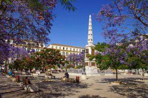 Plaza de la Merced con todos los arboles en floración